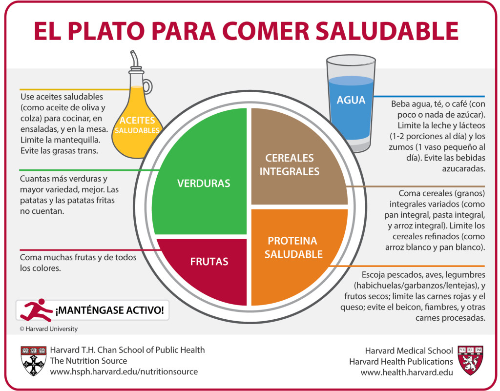 plato de comer saludable - 8 TIPS PARA UNA NAVIDAD SALUDABLE